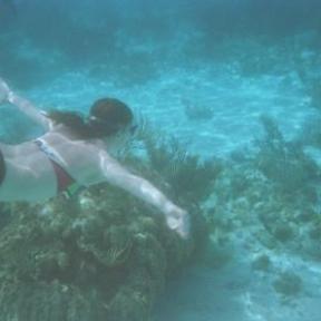 Adventures in the water